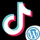 TikTok Video Downloader Without Watermark WordPress